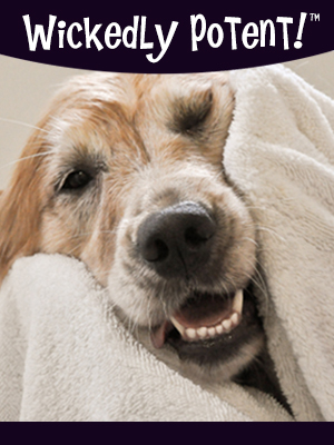 PawFlex   Wickedly Potent, Natural Remedies Dry Dog Shampoo