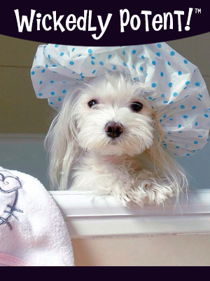 PawFlex | Wickedly Potent, Natural Remedies, Puppy Love Dog Shampoo